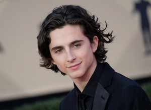 The French Dispatch: Timothee Chalamet está no elenco do próximo filme de Wes Anderson